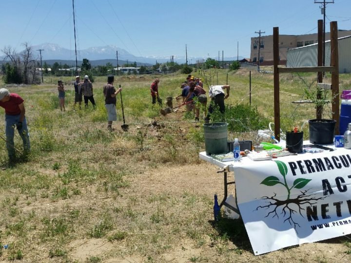 Sonic Bloom Festival hosts Permaculture Action Day at local Walsenburg Community Farm